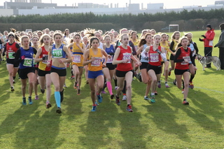 This photo of the SEAA Masters and Inter County XC Championships is by Barry Cornelius